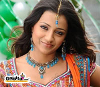 Trisha's Bollywood film begins