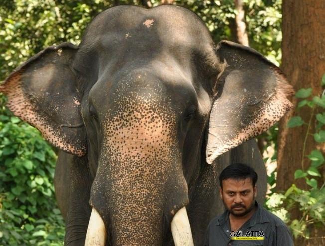கும்கி 2 - வேறு இசையமைப்பாளருக்கு மாறிய பிரபு சாலமன்!