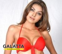 Sherlyn Chopra not in Kamasutra sequel!