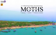 Moths - Veetil Puchigal