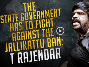 The State government has to fight against the Jallikattu ban - TRajendar