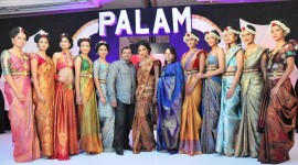 Palam Silks Silkline Fashion Show