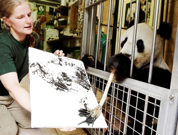 Vienna Zoo Lures Visitors with Painting Panda