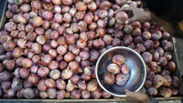 Onion thefts reported across the north as prices soar - Daily news