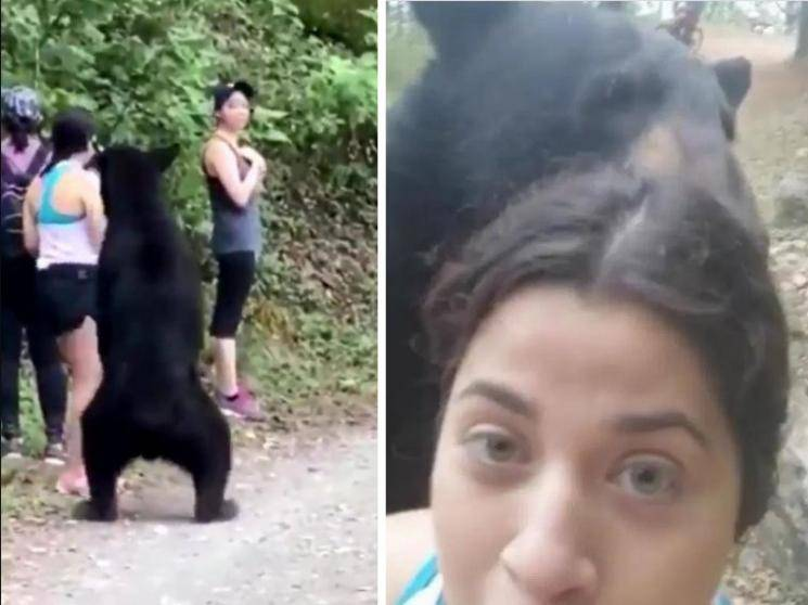 Girls caught by surprise and shock by bear while hiking in ecological park - viral videos!