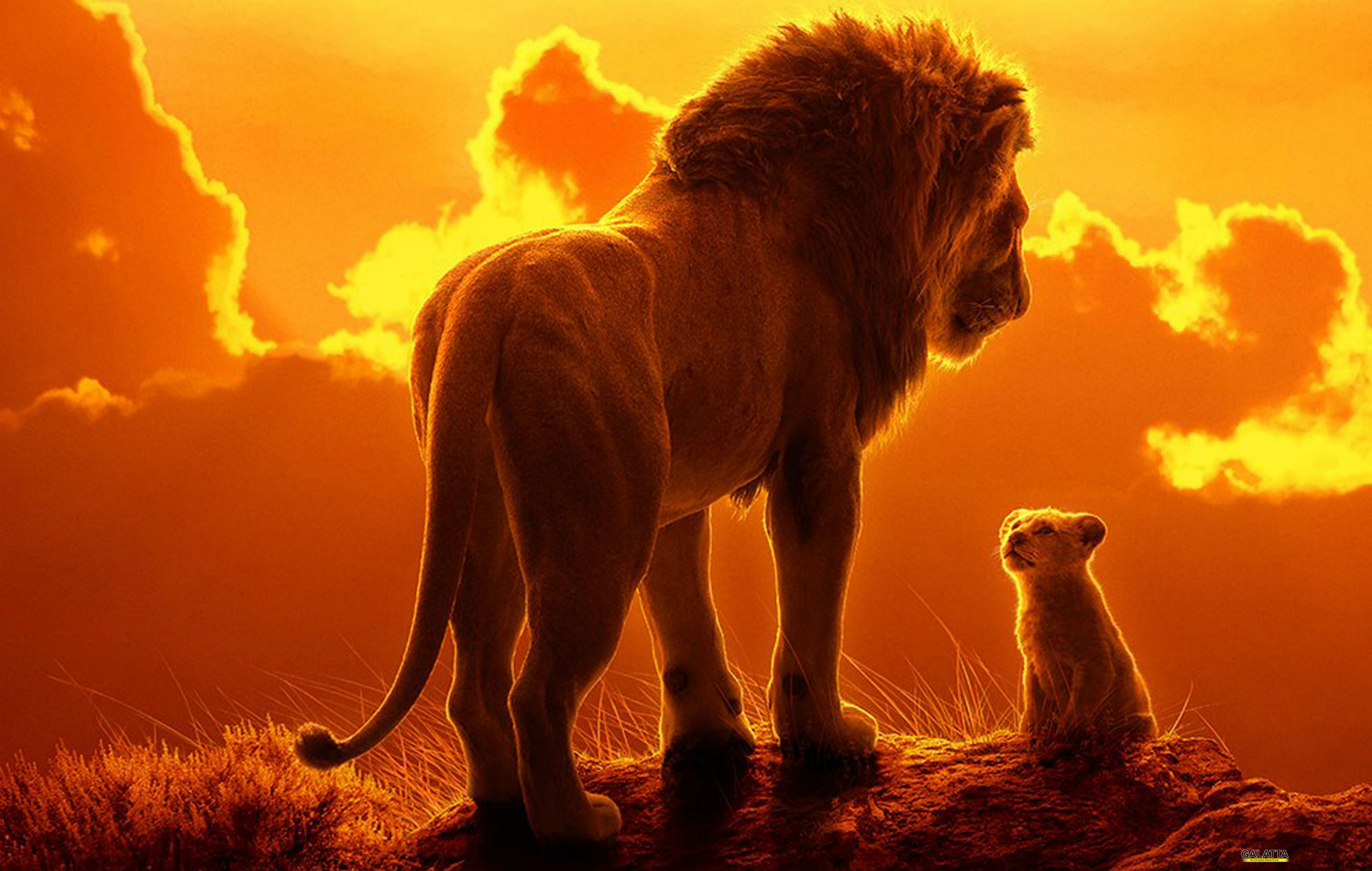 The Lion King 2019 - English Movies Review