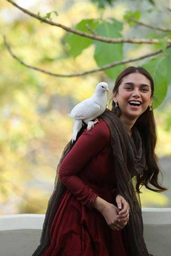 Aditi Rao Hydari - Photos Stills Images