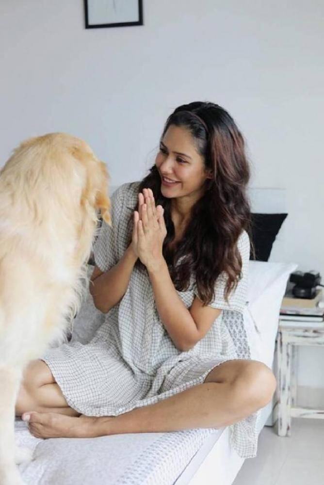 Sonam Bajwa - Photos Stills Images