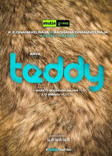arya teddy