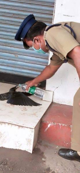 Simbu Maanaadu producer Suresh Kamatchi statement TN police corona lockdown