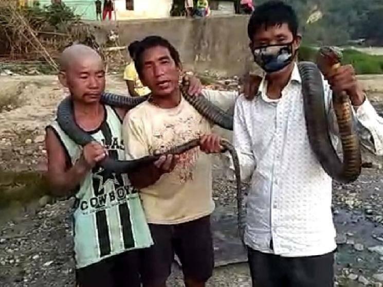 3 Arunachal Pradesh men kill 10 feet cobra for food during COVID