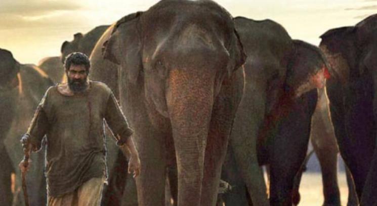 Prabhu Solomon About Kerala Elephants Tragic Death