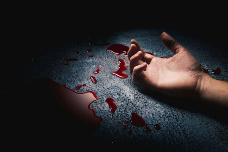 Man kills wife mother in law for daughter divorce