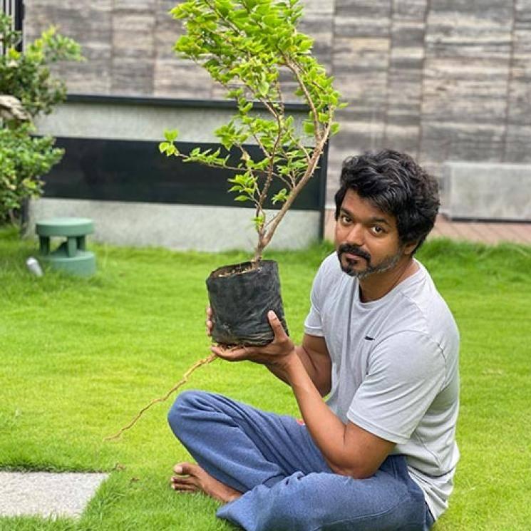 Vijay Planting Saplings Mahesh Babu