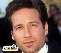 duchovny back to tv - Tamil Movie Cinema News