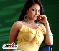 Meenakshis cameo in Silambattam and Thoranai