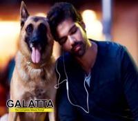 Naaigal Jaakirathai to get a sequel!