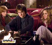 Harry Potter actor dies