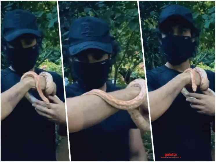 Tovino Thomas playing with a corn snake video - Tamil Movie Cinema News
