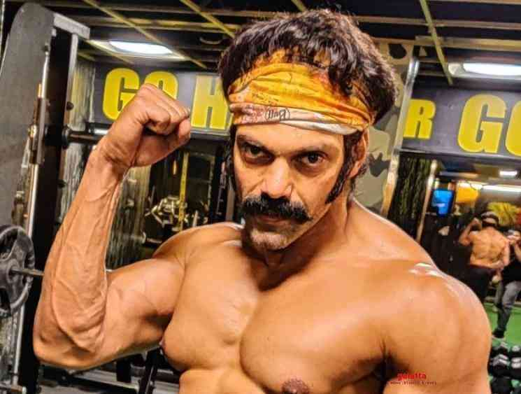 Arya Salpetta fitness transformation photo goes viral - Tamil Movie Cinema News
