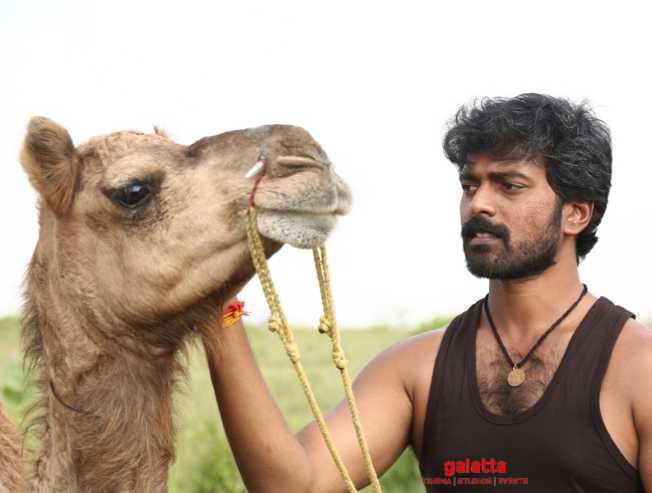 Emotional camel friendship scene in Bakrid | Vikranth