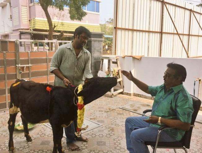 celebrity pongal wishes collection 2018 rajinikanth kamal haasan