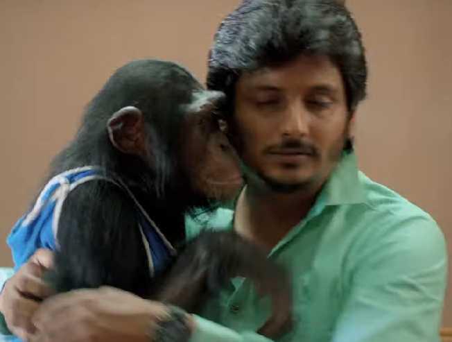 Jiiva's Gorilla Movie Trailer - Funny and interesting  - Tamil Cinema News