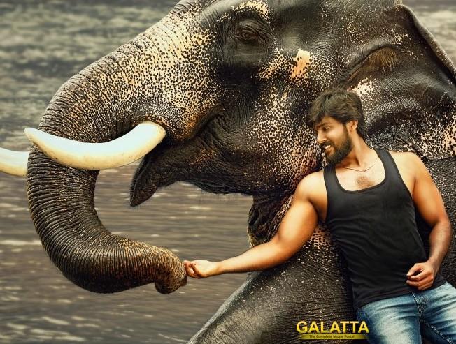 Arav Rajabheema Movie Announced Teaser Trailer Release
