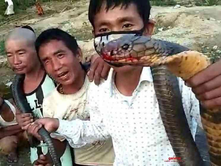 3 Arunachal Pradesh men kill 10 feet cobra for food during COVID - Tamil Movie Cinema News