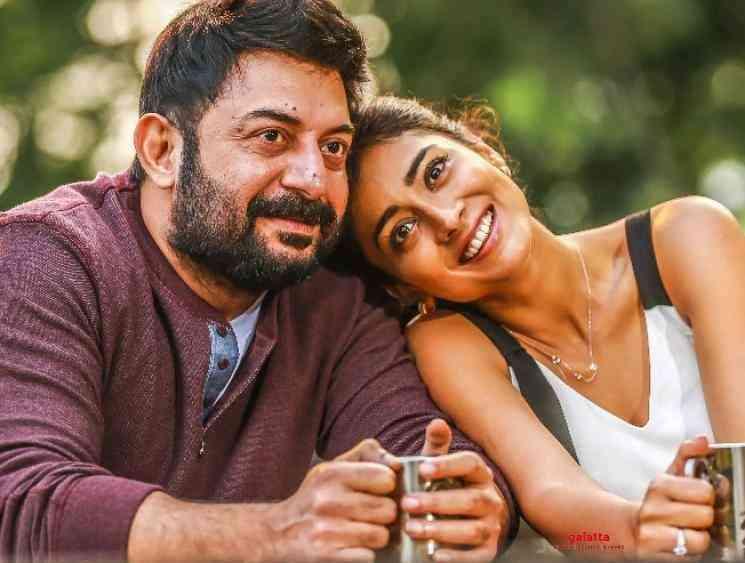 Karthick Naren on Naragasooran release with Tenet reference - Tamil Movie Cinema News