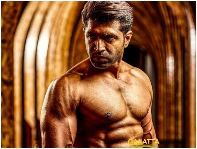 WOW: Popular kickboxer is now Arun Vijay's heroine in BOXER!