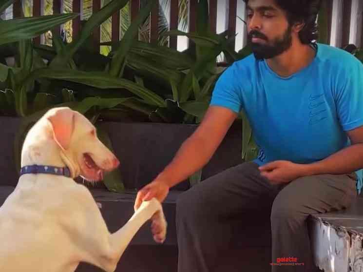 GV Prakash directs new video featuring his dog Happy Rajapalayam - Tamil Movie Cinema News