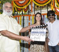 Bengal Tiger in post - production stage !