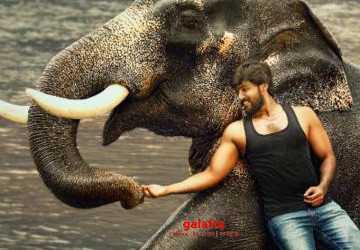 ராஜபீமா படத்தின் ட்ரைலர் வெளியானது !- Latest Tamil Cinema News