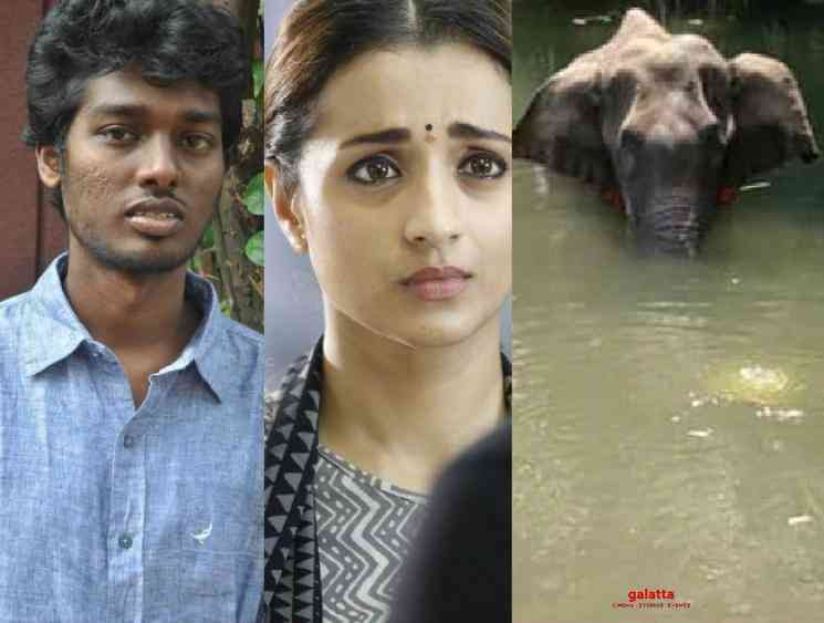 Trisha Simran and Atlee react to pregnant elephant death Kerala - Tamil Movie Cinema News