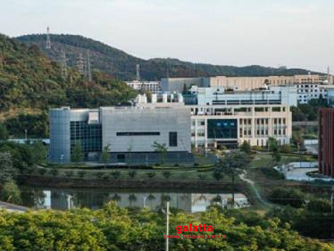 Wuhan Lab had 3 Live Bat Corona Virus Strains!-