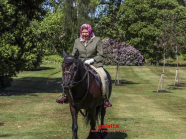 Queen Elizabeth rides a horse as UK eases lockdown rules!-