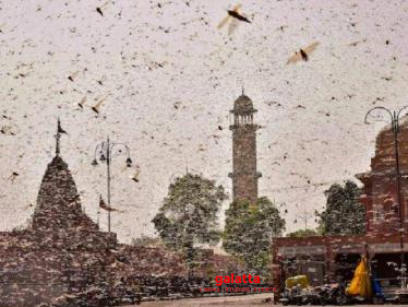 Drones & Planes to fight locusts attack on agricultural crops?-