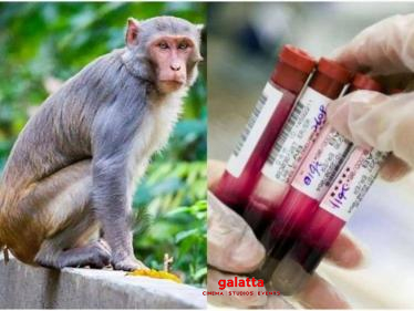 Monkey steals coronavirus patients' blood samples from hospital