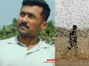 Suriya's Kaappaan movie scene happens in real life - locust attack in India | Videos Go Viral