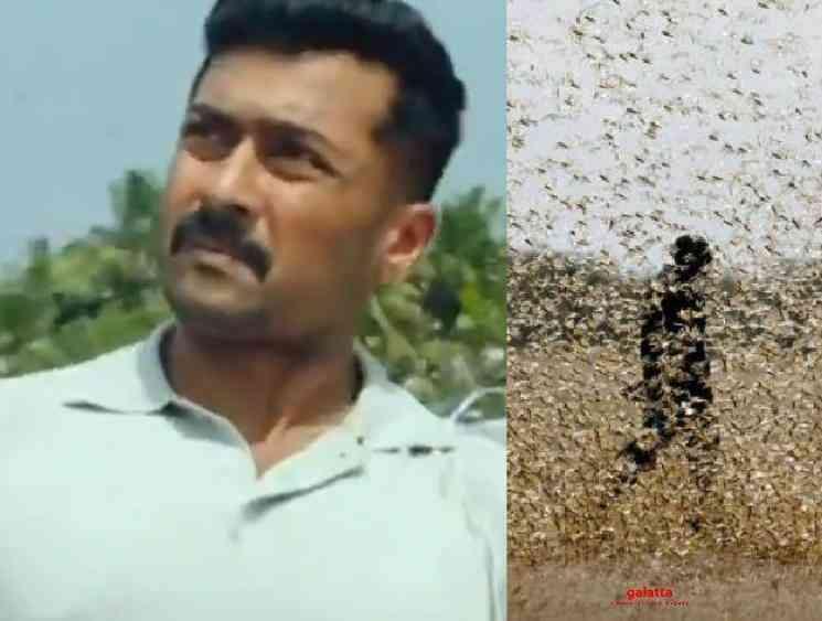 Suriya Kaappaan movie scene locust attack happens in India - Tamil Movie Cinema News