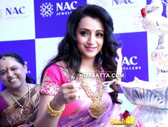 Madhurey director ropes in Trisha?
