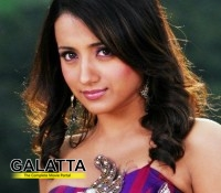 Trisha in Attarintiki Daaredi remake?