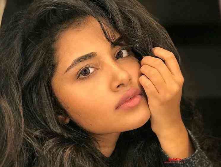 Anupama Parameswaran loses her two pet dogs to Canine Parvovirus - Tamil Movie Cinema News