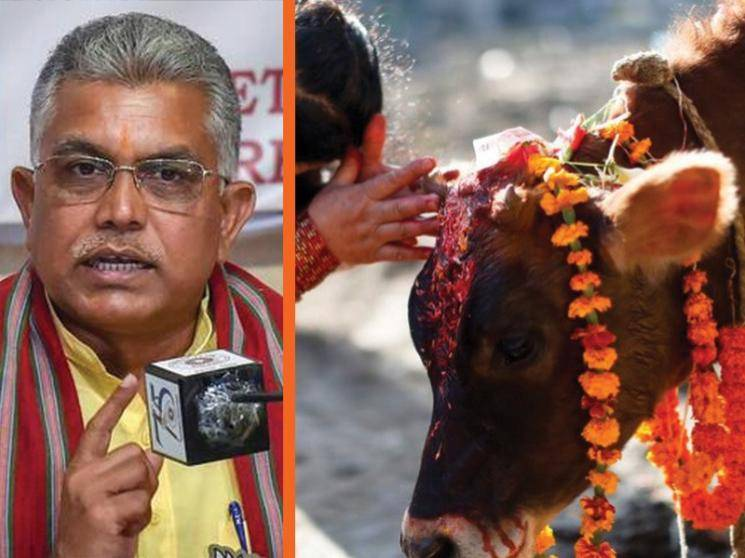 West Bengal BJP chief Dilip Ghosh advises to drink cow urine to fight coronavirus